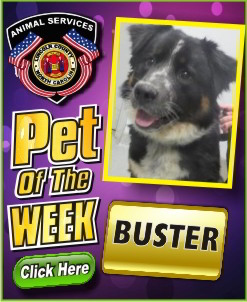 Pet of the Week