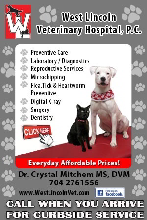1 - West Lincoln Vet Regular Ad