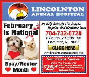 1-Lincoln Animal Hospital 350 2019 FEB SPECIAL