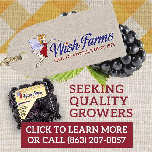 Wish Farms