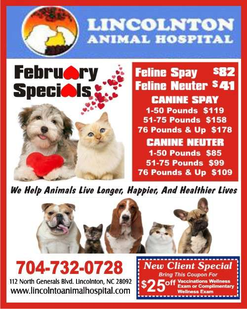 1-Lincoln Animal Hospital 500 FEB SPECIAL