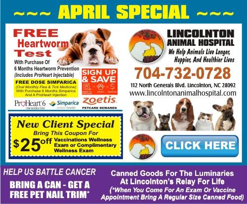 1-Lincoln Animal Hospital 500 APRIL  SPECIAL