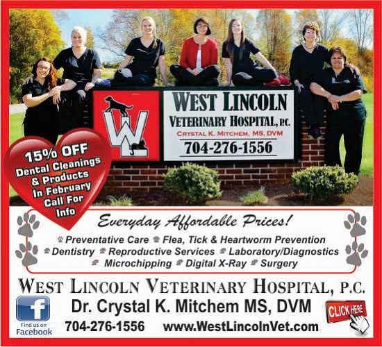 West Lincoln Vet 550 Feb special 2019