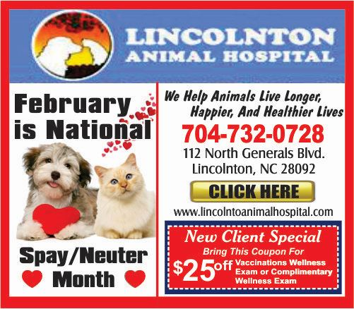 1-Lincoln Animal Hospital 500 2019 FEB SPECIAL