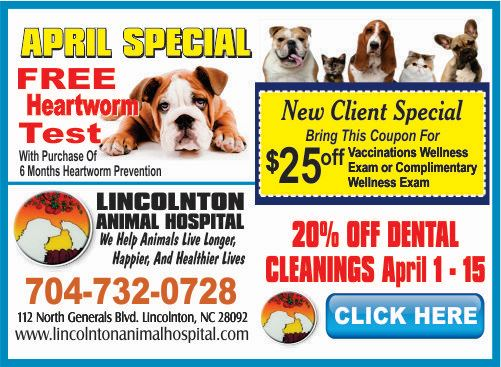 1 - Lincolnton Animal Hospital April 2019 Special